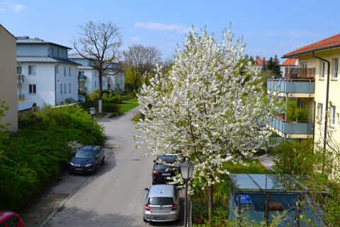 Aussicht vom Westbalkon - 1-Zimmer-Wohnung mit sonnigem Westbalkon