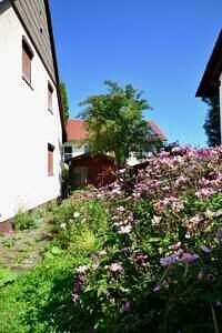 EFH Neufarn-Vaterstetten Haus Ostseite