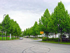 Georg-Wimmer-Ring in Pöring
